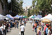 Shopping at the Anaheim Farmer's Market