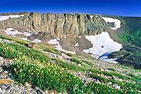 Lava Cliffs found along Trail Ridge Road.  Glacial ice cut into the mountain exposing the tuff.  Rocky Mountain National Park, Colorado.