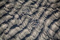 SCHIERMONNIKOOG - afdruk voetstap strand noordzee Schiermonnikoog. COPYRIGHT KOEN SUYK
