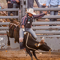 Steer rider Amber Toledo wins the first round with the only qualified ride during the Lion Club Rodeo Thursday at Red Rock Park.