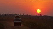 Game drive during sunrize in Murchison Falls NP, Uganda.