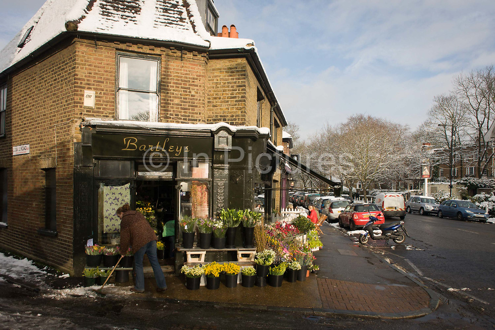 """An employee of Bartleys the florist business in Dulwich Village, south London, brushes melting pavement snow. Buckets of assorted blooms are on sale on the pavement, recently covered by snow but now wet from the following thaw. In the distance are Victorian shops and period homes in this quiet and exclusive part of south London. Dulwich Village is an area of Dulwich in South London's SE21 postcode area in England It is located in the London Borough of Southwark. """"Dulwich Village"""" is also the name of one of the High Streets in the area. Residents in Dulwich Village have to pay ground rent to the Dulwich Estate a landowning charitable organisation. The first documented evidence of Dulwich is as a hamlet outside London in 967AD, granted by King Edgar to one of his thanes Earl Aelfheah."""