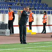 Galatasaray's Coach Hamza Hamzaoglu during their Turkish Superleague soccer match Mersin Idman Yurdu between Galatasaray at the Mersin stadium in Mersin Turkey on Sunday 12 May 2015. Photo by Aykut AKICI/TURKPIX
