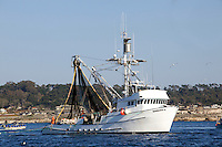 A fishing boat heads out of Monterey harbor - California.