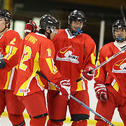 China celebrate a goal from Bao Jiachang (Centre, right) during China's 6-2 win during the Bulgaria V China match at the 2012 IIHF Ice Hockey World Championships Division 3 held at Dunedin Ice Stadium. Dunedin, Otago, New Zealand. 17th January 2012. Photo Tim Clayton