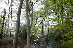 Wendover, UK. 9th May, 2021. A view of ancient woodland at Jones Hill Wood showing, to the left of fencing, a section which is being felled for the HS2 high-speed rail link and, to the right, a section which will remain. Felling of Jones Hill Wood, which contains resting places and/or breeding sites for pipistrelle, barbastelle, noctule, brown long-eared and natterer's bats and is said to have inspired Roald Dahl's Fantastic Mr Fox, resumed after a High Court judge lifted an injunction preventing further felling and refused an application for judicial review.