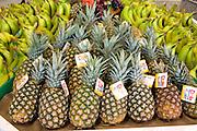Fresh pineapples and bananas at Orange Blossom Groves produce store.  Seminole Tampa Bay Area Florida USA