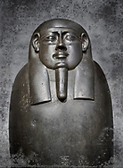 Ancient Egyptian basalt sarcophagus of royal scribe Shepman - Thebes Khokha, Tomb of Djehutymes, TT32- Early Ptolemaic Period, 19th Dynasty, 4th Cent BC. Egyptian Museum, Turin. Grey background<br /> <br /> The sarcophagus of Shepmin is an interesting example of Ptolemaic art with rounded contours and highly polished finish. The inscription bears the deceased name and titles.