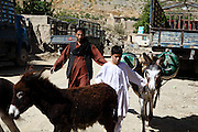 A boy and his father are transporting gas cylinders with the use of donkeys in a small town on the road from Kabul, the capital of Afghanistan, to the mountain village of Bamiyan, located on the Hindu Kush range. The Buddhas of Bamiyan were two 6th century monumental statues of standing Buddhas carved into the side of a cliff in the Bamiyan valley in the Hazarajat region of central Afghanistan, situated 230 km northwest of Kabul at an altitude of 2500 meters. The statues represented the classic blended style of Gandhara art. The main bodies were hewn directly from the sandstone cliffs, but details were modelled in mud mixed with straw, coated with stucco. Amid widespread international condemnation, the smaller statues (55 and 39 meters respectively) were intentionally dynamited and destroyed in 2001 by the Taliban because they believed them to be un-Islamic idols. Once a stopping point along the Silk Road between China and the Middle East, researchers think Bamiyan was the site of monasteries housing as many as 5,000 monks during its peak as a Buddhist centre in the 6th and 7th centuries. It is now a UNESCO Heritage Site since 2003. Archaeologists from various countries across the world have been engaged in preservation, general maintenance around the site and renovation. Professor Tarzi, a notable An Afghan-born archaeologist from France, and a teacher in Strasbourg University, has been searching for a legendary 300m Sleeping Buddha statue in various sites between the original standing ones, as documented in the old account of a renowned Chinese scholar, Xuanzang, visiting the area in the 7th century. Professor Tarzi worked on projects to restore the other Bamiyan Buddhas in the late 1970s and has spent most of his career researching the existence of the missing giant Buddha in the valley.