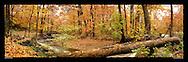 Panoramic Photograph of Sligo Creek Park, Takoma Park, MD.  Print Size (in inches): 15x5; 24x8; 36x12; 48x15; 60x19; 72x24