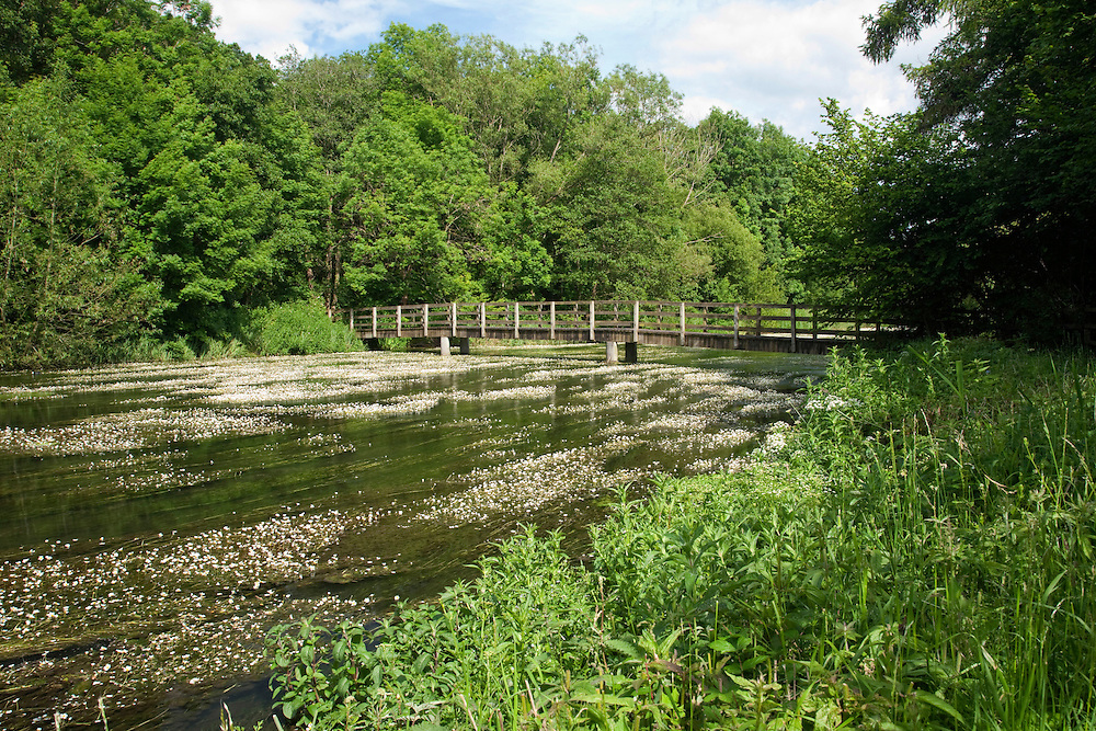 Footbridge over the River Kennet at Chilton Foliat near Hungerford, Berkshire, Uk