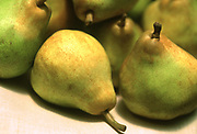Close up selective focus photograph of some Comice pears