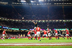 Eben Etzebeth of South Africa claims the lineout<br /> <br /> Photographer Simon King/Replay Images<br /> <br /> Under Armour Series - Wales v South Africa - Saturday 24th November 2018 - Principality Stadium - Cardiff<br /> <br /> World Copyright © Replay Images . All rights reserved. info@replayimages.co.uk - http://replayimages.co.uk