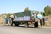 Israel, Negev, Lachish Region, Vineyard, transporting the crop