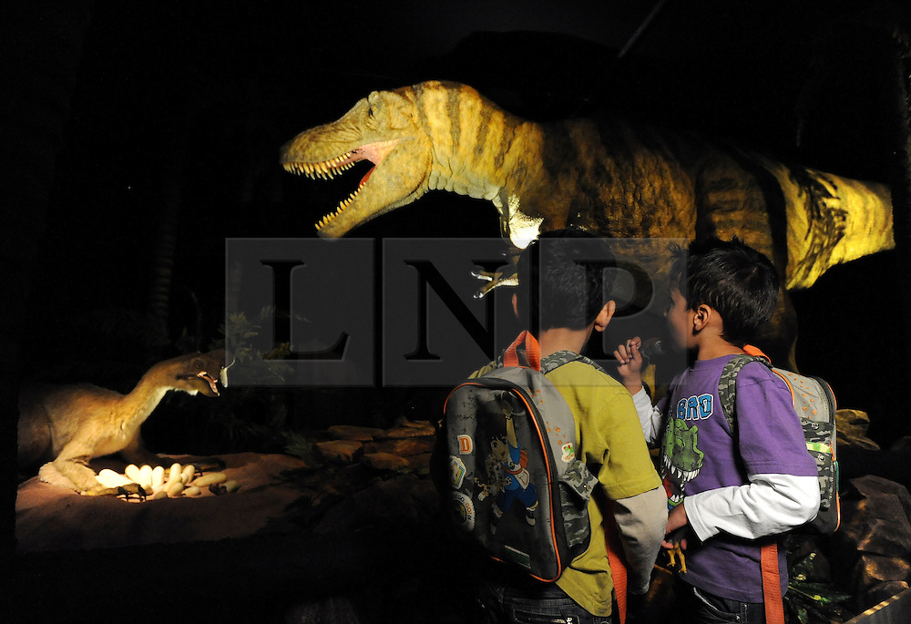 © licensed to London News Pictures. LONDON UK. 20/04/11. Twins Freece (R) and Zane (L) Patel look at the  animatronic Tarbosaurus. Dinosaurs make a dramatic return to the London's Natural History Museum in this summer's family blockbuster exhibition, Age of the Dinosaur. .See special instructions for usage rates. Photo credit should read Stephen Simpson/LNP