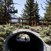 The Mammoth Lakes Town Loop bike and hiking path is the perfect place to exercise while enjoying amazing views.