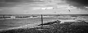 20121210, Cadzand, Nederland, Noordzee. PHOTO © Christophe Vander Eecken