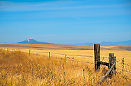 This is an image from Eastern Oregon, with two Volcanic mountains in the distance. Barely visible on a ridge in the right background area is a windmill farm. The gold of the grasses contrast nicly with the blue of the sky and the hazy hills.
