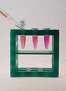 Adding chemicals to three test tubes in a tube rack