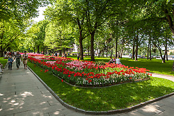 stock photo of a park in russia with a bed of flowers