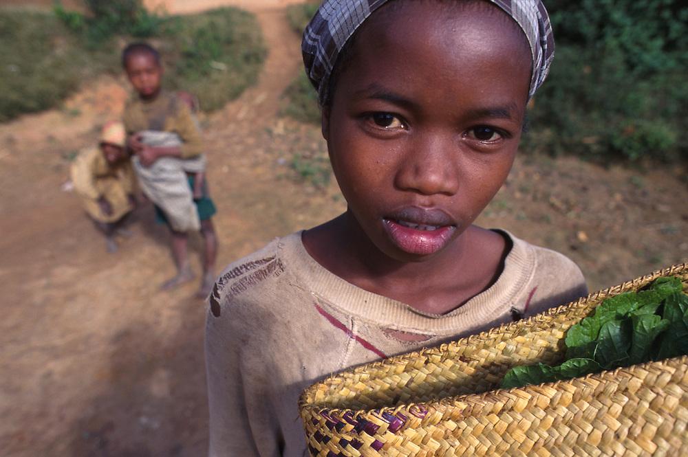 A local girl helps her family with subsistence farming,Fianarantsua central highlands.