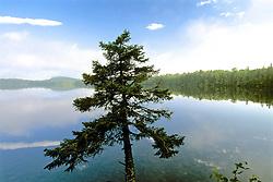 Maine Scenic
