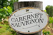 Cabernet Sauvignon sign in the Pepper Tree Winery, Hunter Valley, Australia