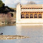 Lagoon at Villafáfila with a bird hide.