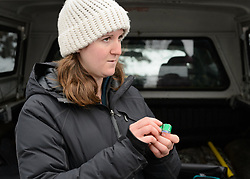 Rachel Wheat, a graduate student at the University of California Santa Cruz, talks to Haines School students about the bird bands she is attaching to the bald eagles in her research study. Since 2009, Haines School students have been conducting a weekly count of bald eagles during the fall semester for the citizen science class at the Haines School in Haines, Alaska. Wheat is conducting a bald eagle migration study of eagles that visit the Chilkat River for her doctoral dissertation. She hopes to learn how closely eagles track salmon availability across time and space. The bald eagles are being tracked using solar-powered GPS satellite transmitters (also known as a PTT - platform transmitter terminal) that attach to the backs of the eagles using a lightweight harness. Along with the bright green leg bands, each of the research bald eagles will receive a silver aluminum U.S. Geologic Survey (USGS) leg band. The bright green leg bands have larger identification information than the USGS bands making it easier to read using binoculars or a spotting scope. During late fall, bald eagles congregate along the Chilkat River to feed on salmon. This gathering of bald eagles in the Alaska Chilkat Bald Eagle Preserve is believed to be one of the largest gatherings of bald eagles in the world.