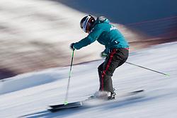 22.10.2010, Rettenbachferner, Soelden, AUT, FIS World Cup Ski Alpin, Lady, Soelden, im Bild Elizabeth Goergl (AUT), EXPA Pictures © 2010, PhotoCredit: EXPA/ M. Gunn