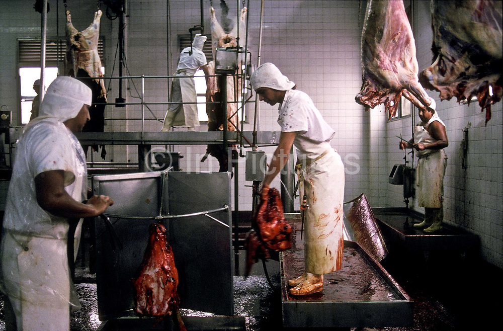 Cattle slaughter house, Buenos Aires, Argentina