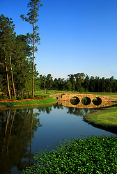 Stock photo of an afternoon view of a well maintained golf course