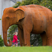 The 'unveiling' of a life size Asian Elephant at the House for an Art Lover, Bellahouston. Park by artist Kenny Hunter. 2 year old Esme Simmons from Glasgow gets a close up.  The artist Kenny Hunter looks on from the right. Picture Robert Perry for The Herald and Evening Times 4th Sept 2015<br /> <br /> Must credit photo to Robert Perry<br /> FEE PAYABLE FOR REPRO USE<br /> FEE PAYABLE FOR ALL INTERNET USE<br /> www.robertperry.co.uk<br /> NB -This image is not to be distributed without the prior consent of the copyright holder.<br /> in using this image you agree to abide by terms and conditions as stated in this caption.<br /> All monies payable to Robert Perry<br /> <br /> (PLEASE DO NOT REMOVE THIS CAPTION)<br /> This image is intended for Editorial use (e.g. news). Any commercial or promotional use requires additional clearance. <br /> Copyright 2014 All rights protected.<br /> first use only<br /> contact details<br /> Robert Perry     <br /> 07702 631 477<br /> robertperryphotos@gmail.com<br /> no internet usage without prior consent.         <br /> Robert Perry reserves the right to pursue unauthorised use of this image . If you violate my intellectual property you may be liable for  damages, loss of income, and profits you derive from the use of this image.