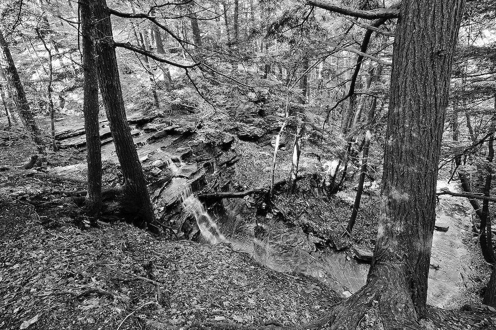 Hemlock Lake, NY.<br /> This feeder creek to Hemlock Lake follows the Livingston County line. It flows through a lovely forest in western New York.  At this fifty foot drop over a shale staircase, there are a lot of big hemlocks and a fairly open understory.  In this case I liked the black & white conversion, so I stayed with that rather than a color image.