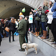 Spectators watch runners make their way along First Avenue in Manhattan, New York, during the ING New York Marathon. New York, USA. 3rd November 2013. Photo Tim Clayton