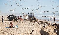 COSTA DA CAPARICA bij Almada-Lissabon PORTUGAL - vissers halen vanaf het strand de vissen binnen die ze ter plekke verkopen aan particulieren en resaturanthouders. Zonaanbidders blijven zitten. COPYRIGHT KOEN SUYK