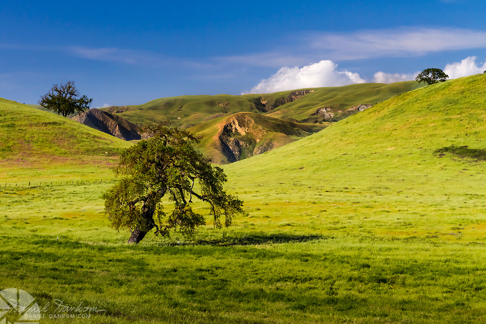 Green hills in the Paicenes Valley south of Hollister, California