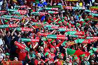 Tifosi Portogallo Portugal Supporters <br /> Saint-Etienne 14-06-2016 Stadium Geoffroy-Guichard Football Euro2016 Portugal-Iceland / Portogallo-Islanda Group Stage Group F<br /> Foto Massimo Insabato / Insidefoto