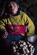 A young girl prepares potatoes for her school teacher and herself after class in Q'eros, high in the Cordillera de Paucartambo, Andes Mountains, Peru before walking to her home in a neighboring village.