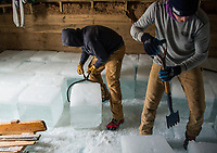 Alex Chelstowski and Ben Tweedy place ice blocks loaded into the Rockywold Ice House during RDC's annual ice harvest on Tuesday.  ©2018 Karen Bobotas Photographer