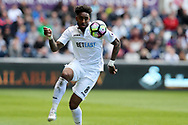 Leroy Fer of Swansea city in action. Premier league match, Swansea city v Middlesbrough at the Liberty Stadium in Swansea, South Wales on Sunday 2nd April 2017.<br /> pic by Andrew Orchard, Andrew Orchard sports photography.
