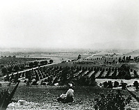 1901 Panorama of Hollywood