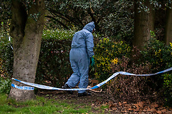 © Licensed to London News Pictures. 06/01/2020. London, UK. Police forensics teams search a nature reserve near Barnes Village South West London. Police discovered human remains at an address in Nowell Road, Barnes on Friday 3rd January 2020. A 17 year old youth has now been charged with murder following the discovery of a body at the address in Nowell Road. Photo credit: Alex Lentati/LNP
