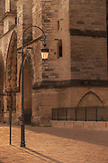 View of street lamp with Cathedral of Notre-Dame in background, Reims, France