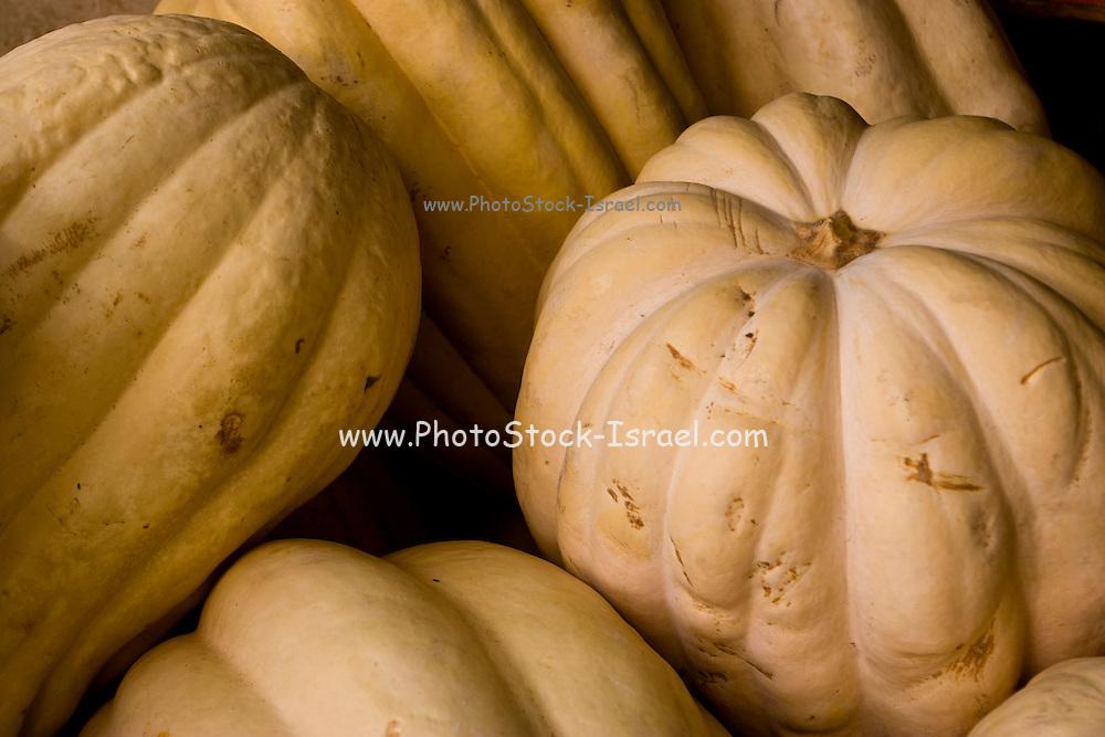 Israel, Petah Tikva, Pumpkin stall in the market