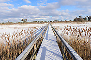 Quogue Village Wetlands Preserve ion Dune Road, Quogue, NY, in Winter