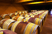"""The barrel aging cellars with rows of oak barrels. All are """"painted"""" red in the middle with red wine to make them look more aesthetic. In the near row barrels with the bung hole on top (normal) in the second row barrels with the bung hole to the side (bond a cote)  Domaine Pierre Gaillard, Malleval, Ardeche, Ardeche, France, Europe"""