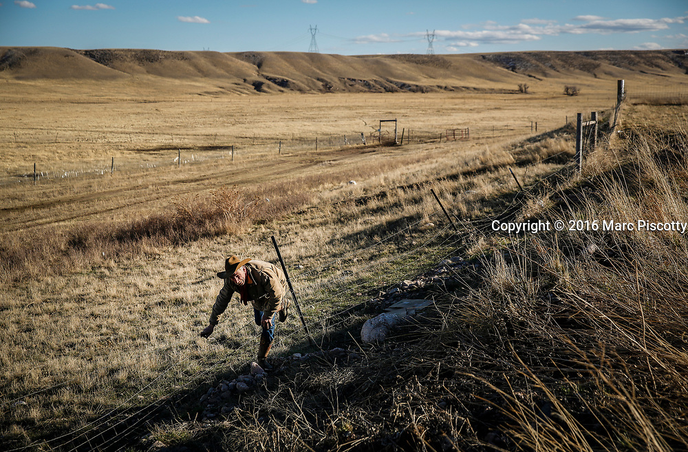 Randy Sabin, 61, of Cheyenne, Wyo. hops over fencing while moving horses to pasture on the Terry Ranch just outside of Cheyenne, Wyo. on March 8, 2016. Wyoming is the least populous and the second least densely populated of the 50 United States but a very popular location for the formation of offshore corporations because you can set up a LLC in Wyoming without your name having to be in the State Register.