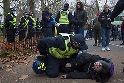 © Licensed to London News Pictures.28/11/2020. London, UK. An anti-lockdown protestor is arrested after a group gathered in Hyde Park, central London.Photo credit: Marcin Nowak/LNP