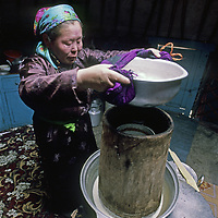 """MONGOLIA, Darhad Valley.  Doljmaa, a herding woman, distills fermented mare's milk into stronger """"airag."""""""
